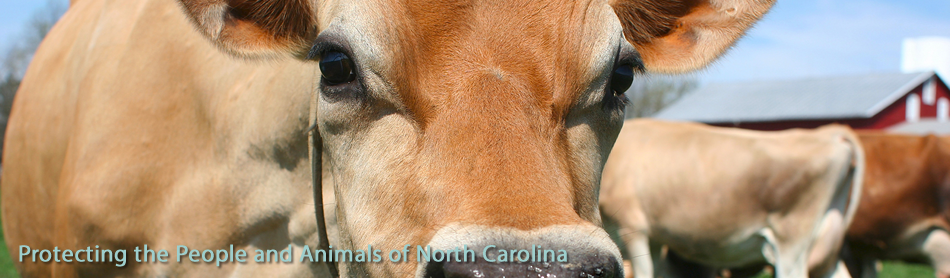 The North Carolina Veterinary Medical Board (NCVMB)