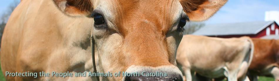 The North Carolina Veterinary Medical Board (NCVMB)